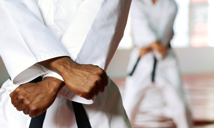 Kamiyo Dojo - Temescal: 8 or 16 Martial Arts Classes (Up to 68% Off)