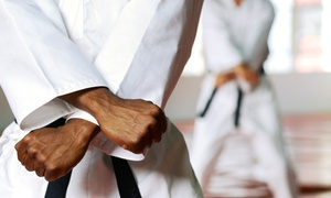 Kamiyo Dojo: 8 or 16 Martial Arts Classes (Up to 68% Off)