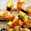Up to 63% Off Stone-Crab Dinner for 2 or 4 at Kitchen 305