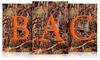 Fall Camo Mini Monogram Flag