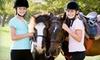 Crossroads Farm - Lindsay Meadows: $75 for Four 60-Minute Horseback-Riding Lessons at Crossroads Farm ($180 Value)