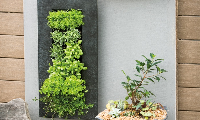 Metal Wall Planter 12-pocket galvanized metal indoor-outdoor wall planter | groupon