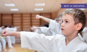Go2Karate: 10 Martial-Arts Classes and Uniform, or 16 Classes, Uniform, Test, and Graduation Belt at Go2Karate (94% Off)