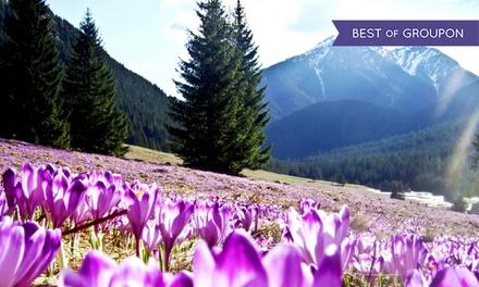Tatry-Zakopane: 1-5 nocy dla 2 osób ze śniadaniami lub opcjonalnie obiadokolacjami oraz atrakcjami w Górskim Pałacyku