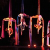 Half Off AWOL Dance Collective Tickets for Two