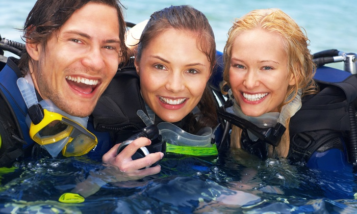 Chesapeake Underwater Sports - Annapolis: Four-Hour Discover Scuba Class for One or Two at Chesapeake Underwater Sports (63% Off)