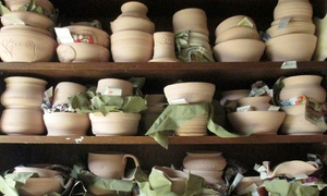 Muddy Rose Pottery: 90-Minute Beginners Pottery Class for One or Two at Muddy Rose Pottery (Up to 51% Off)