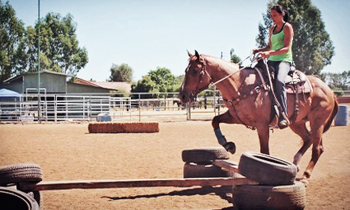 ML Performance Horses - Sanger: Basic Lesson and Trail Ride for Two or Horsemanship Class for Two at ML Performance Horses (Half Off)