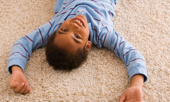 The Dirt Doctor - Dallas: Carpet Steam Cleaning of Three Rooms and Hallway or One Full House from The Dirt Doctor (Up to 70% Off)