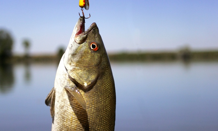 Bassguide Service - Bloomingdale: Six- or Ten-Hour Guided Fishing Trip for Two from Bassguide Service (Half Off)