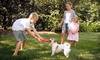Mosquito Squad of Nashville: Half or Full Acre of Mosquito-Barrier Treatment from Mosquito Squad of Nashville (Up to 86% Off)
