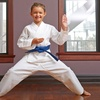 76% Off Martial Arts and Fitness Classes
