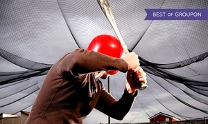 Arena Softball: 10, 20, or 40 Batting-Cage Sessions at Arena Softball (Up to 50% Off)