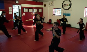 Mu Sool Won Of Pflugerville: $26 for $85 Worth of Martial-Arts Lessons — Mu Sool Won of Pflugerville