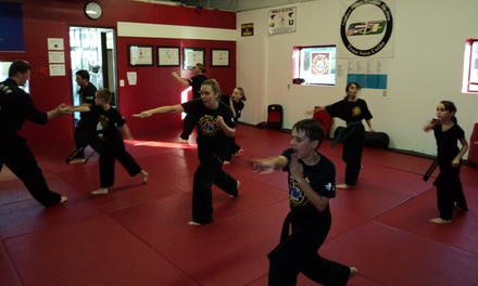 $26 for $85 Worth of Martial-Arts Lessons — Mu Sool Won of Pflugerville