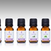 100% Pure Therapeutic Essential Oils Starter Kit (6-Piece)