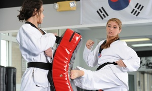 Bayport Black Belt Champions: 5 or 10 Martial Arts Classes at Bayport Black Belt Champions (Up to 69% Off)