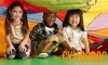 Gymboree Play and Music - Multiple Locations: $32 for One Month of Open-Gym at Gymboree Play and Music ($65 Value)