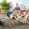 50% Off Private Ride from Sugar Creek Carriages