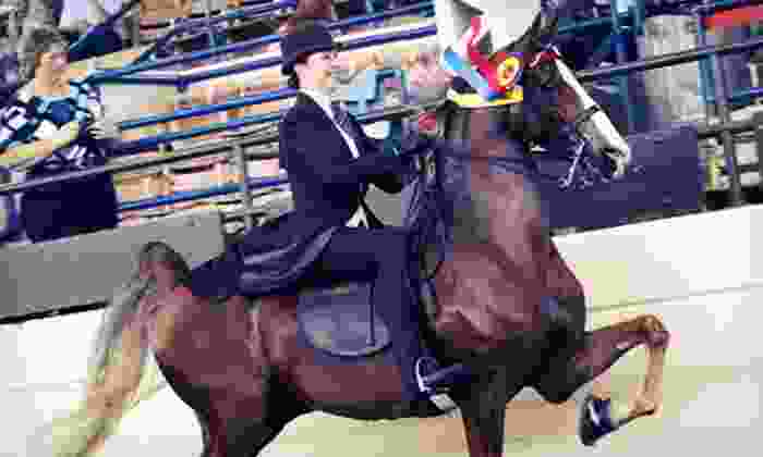 Krussell Stables - Richmond: Two or Four Private 30-Minute Horseback-Riding Lessons at Krussell Stables (55% Off)