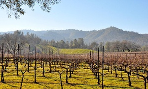 Pope Valley Winery: Wine Tasting and Wine Glasses for Two or Four at Pope Valley Winery (Up to 51% Off)