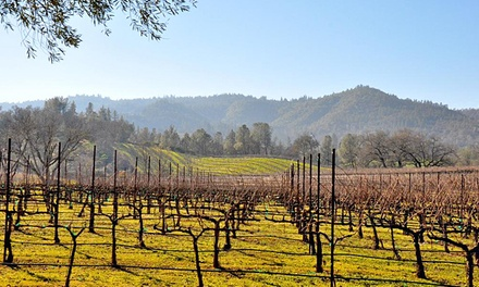 Wine Tasting and Wine Glasses for Two or Four at Pope Valley Winery (Up to 51% Off)
