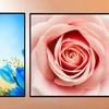 "24""x24"" Unframed Flower Prints"