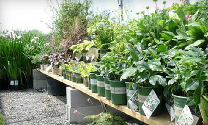 Gold Coast Landscape & Garden Center - Branchport: Locally Grown Produce or Home and Garden Products at Gold Coast Landscape & Garden Center in Long Branch (Half Off)