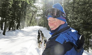 New England Dogsledding: Dog Sled Ride for Two, or Two-Day Dog Sled Package with Overnight Stay at New England Dogsledding (Up to 56% Off)