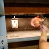 Up to 62% Off Live Fire Shooting-Range Outing in Revere