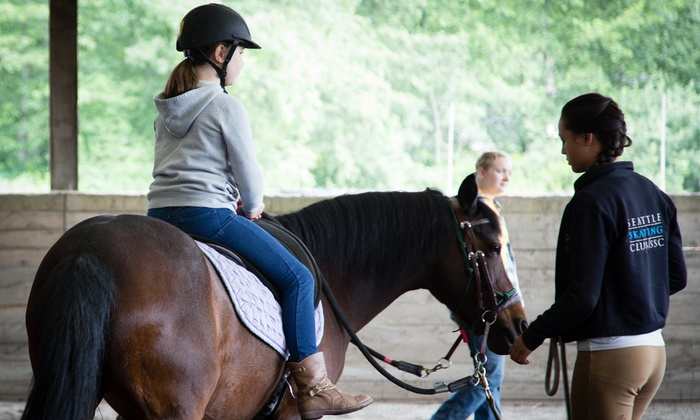 Equine Life Solutions - North Creek: Private Horseback Riding Lesson or Pony Partner Club Experience at Equine Life Solutions (Up to 46% Off)