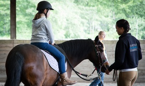 Equine Life Solutions: Private Horseback Riding Lesson or Pony Partner Club Experience at Equine Life Solutions (Up to 46% Off)