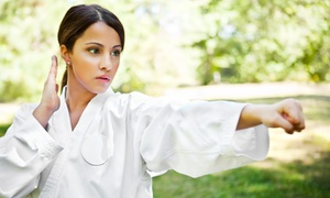 Be The Change Energy Center: 10 Tai Chi Classes or a Month of Unlimited Tai Chi Classes at Be The Change Energy Center (Up to 67% Off)