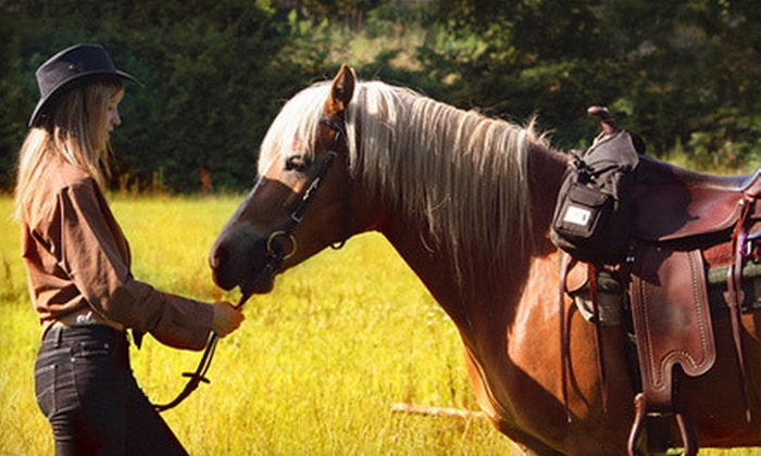 Equine Escapes - Issaquah Plateau: $29 for a One-Hour Group Horseback Trail Ride for One at Equine Escapes ($60 Value)