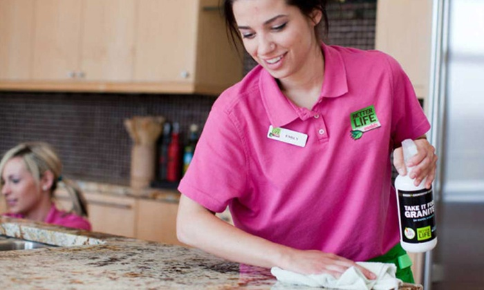 Princess Home Solutions, LLC. - Lake Aumond: Deep-Housecleaning Sessions from Princess Home Solutions, LLC (Up to 54% Off). Three Options Available.