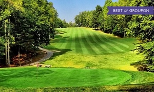 Cameron Hills Golf Links: Day of Unlimited Golf with Cart Rental for 2 at Cameron Hills Golf Links (Up to 64% Off). 2 Options Available.