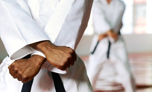 Conqueror Hapkido: 1- or 3-Hour Martial Arts Fitness Bootcamp Classes at Conqueror Hapkido (Up to 57% Off). Four Options Available.