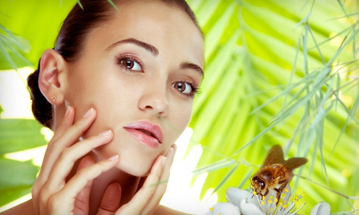 Tamara Wolfson, MS, LAc - Fairfax: One, Three, or Six Facial-Acupuncture Treatments with Bee Venom from Tamara Wolfson, MS, LAc in Fairfax (Up to 55% Off)