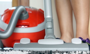 Naperville Vacuums: Vacuum Tune-Up or $100 Toward Elite Vacuum Purchase of $200 or More at Naperville Vacuums