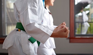 B1 Brazilian Jiu-Jitsu and Fitness: Youth or Adult Classes at B1 Brazilian Jiu-Jitsu and Fitness (Up to 66% Off). Three Options Available.