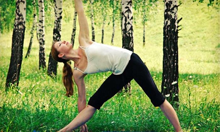 Silver Lake Yoga - Los Angeles: 8 or 16 Yoga Classes at Silver Lake Yoga (Up to 69% Off)