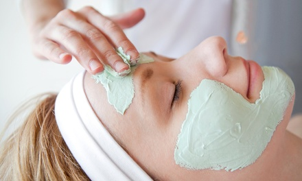 One Mini Facial with optional Microdermabrasion at Orchid Beauty Day Spa (Up to 55% Off)
