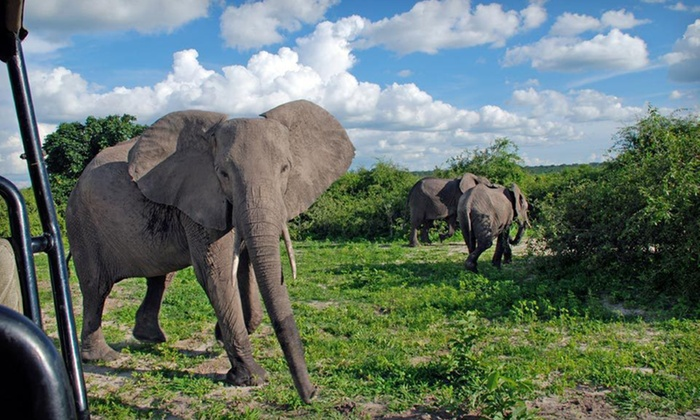 10-Day, 7-Night Land and Sea Safari - South Africa: 10-Day, 7-Night Big 10 South African Safari with Airfare and Accommodations from Group IST
