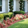 Half Off Lawn Cleanup or Mulch Delivery
