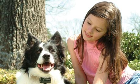 PetSafe Bark Control Collar 395697a4-472b-11e8-8068-00259069d868