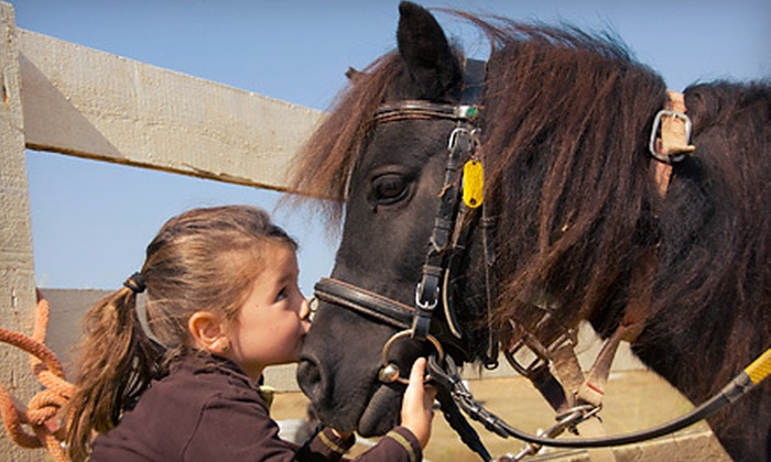 Greenlawn Equestrian Center - Greenlawn: 1, 2, 4, or 12 Group Horseback-Riding Lessons or a 10-Month Membership to Greenlawn Equestrian Center (Up to 57% Off)