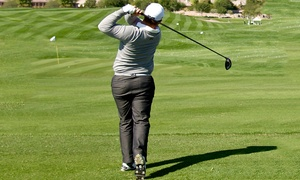 Greg Smith Golf Coach Academy: Up to Three One-Hour Golf Lessons with Video Analysis from the Greg Smith Golf Coach Academy