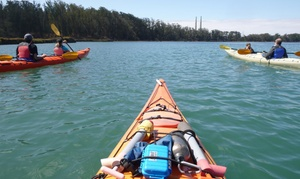 Kayak Connection: Single Kayak, Double Kayak, or Stand Up Paddle Board Rental at Kayak Connection (Up to 37% Off). Four Options.