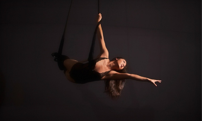 Experience Arts School - Pioneer Protectors: Three-Hour Trapeze Lessons at Experience Arts School (Half Off). 10 Options Available.
