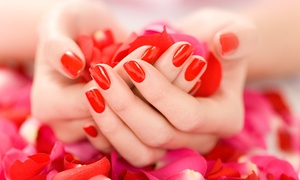 Butterfly Beauty: Choice of Shellac Nails at Butterfly Beauty (Up to 64% Off)